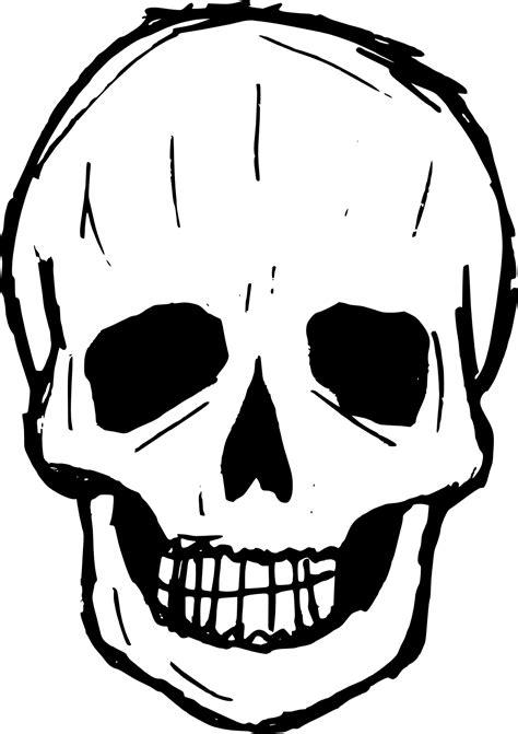 skull drawing vector svg png transparent onlygfxcom