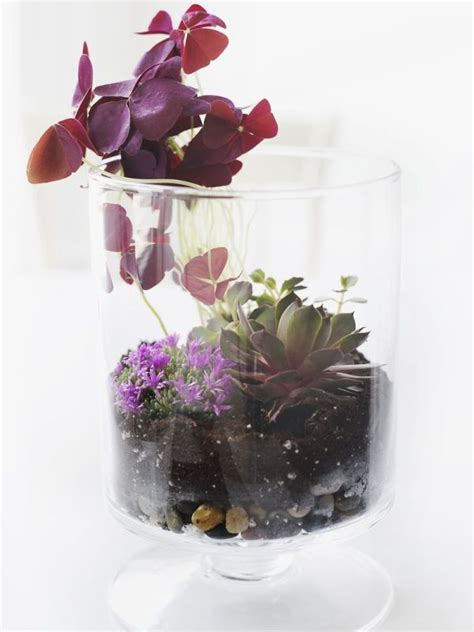 Make Your Own Beautiful Terrarium  10 Inspiring Ideas