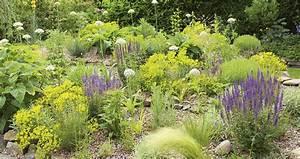 Exotische Früchte Im Eigenen Garten : der herbst im eigenen garten das eigene haus ~ Lizthompson.info Haus und Dekorationen