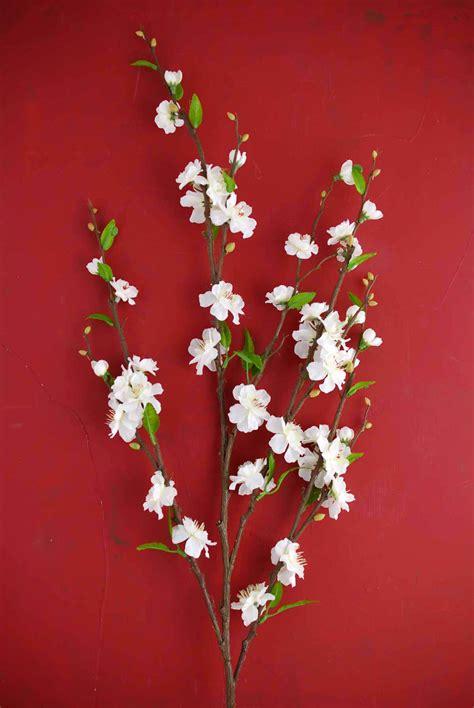 white silk cherry blossom branches