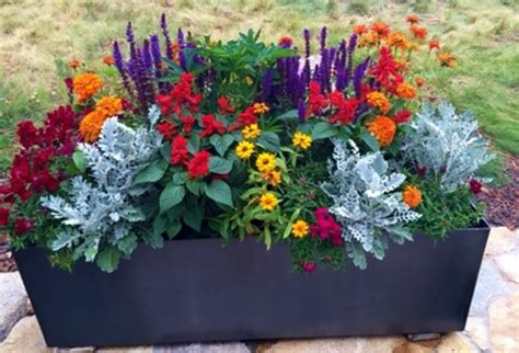 potted plant arrangements hill and dale landscapes indoor outdoor potted plants hill and dale landscapes