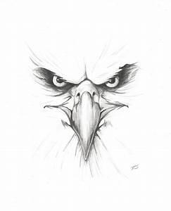 Eagle Eyes Drawing | www.imgkid.com - The Image Kid Has It!