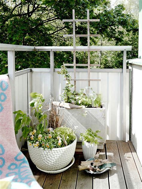 nutzpflanzen balkon balkon pflanzen coole ideen für eine grüne entspannungsecke
