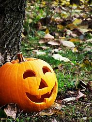 Best Jack O Lantern Faces Ideas And Images On Bing Find What You