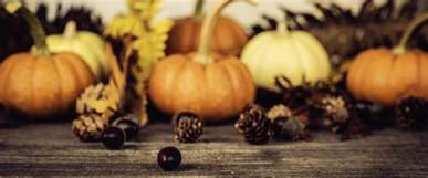 thanksgiving 2017 and 2018 in the united states publicholidays us