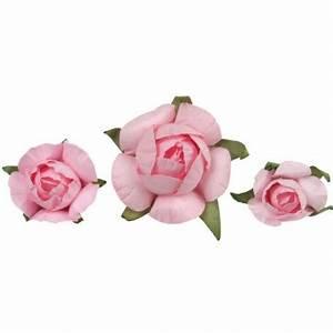 Bouton De Rose : boutons de roses roses en papier les 20 boutons de roses ~ Dode.kayakingforconservation.com Idées de Décoration