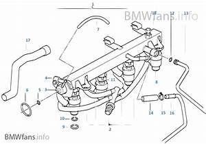 Fuel Injection System  Injection Valve