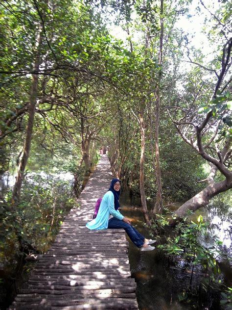 review taman hutan mangrove pik tempat asik liburan