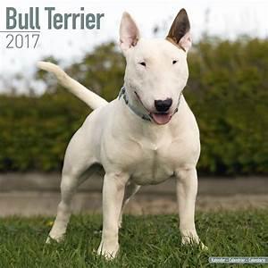 Bull Terrier Calendar 2017 | Pet Prints Inc.