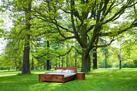 Himmelbett Für Magische Momente Im Garten Archzinenet