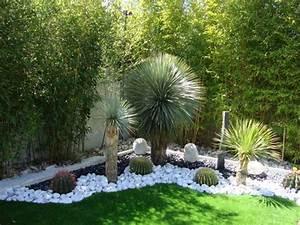 jardins contemporain With amenagement de jardin contemporain 6 creer un jardin avec des cactus et des palmiers