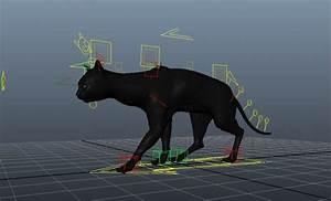 Black Cat Walk 3d Model Maya Files Free Download
