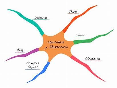 Mental Mapas Mentales Mapa Rama Mente Ejercicio