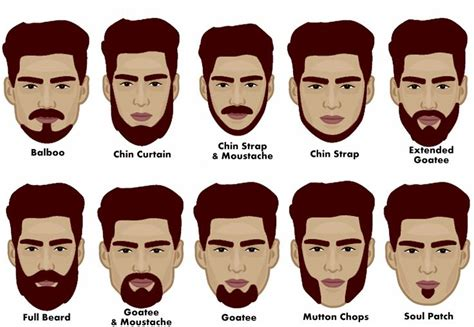 Types Of Chin For Beard