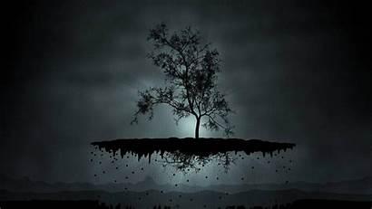 Dark 1080p Wallpapers Tree Digital