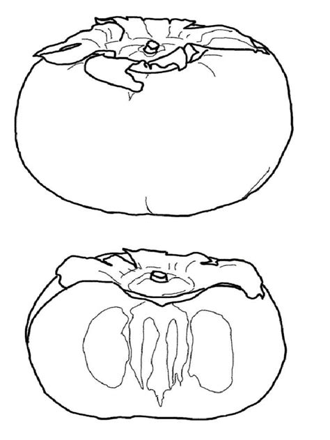 persimmon coloring pages   print persimmon