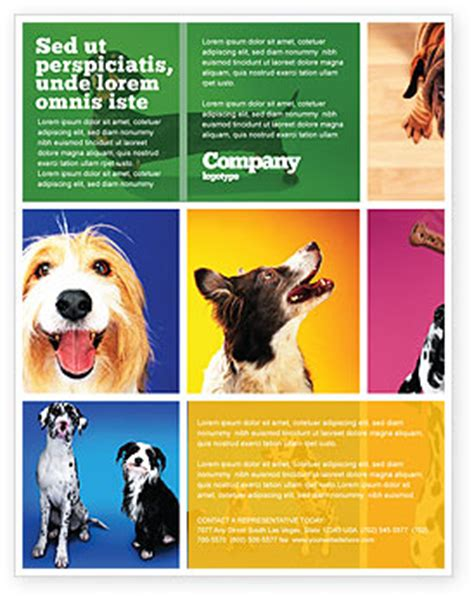 Puppy For Sale Flyer Templates by Breed Flyer Template Background In Microsoft Word