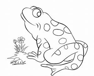 May 23, 2014 Story Time - FROGS! - The Newbury Town Library