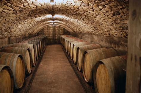 centuries  wine cellar   digging