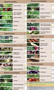 Que Planter En Juin : que cultiver au potager au mois de juin blog jardin ~ Melissatoandfro.com Idées de Décoration