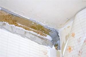 Comment Casser Un Mur Porteur : casser un mur de placo porteur ou pas ~ Melissatoandfro.com Idées de Décoration