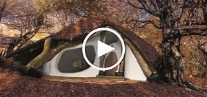 Haus Gehört Nur Einem Ehepartner : in sterreich entsteht ein hobbithaus aus nur einem baum ~ Lizthompson.info Haus und Dekorationen