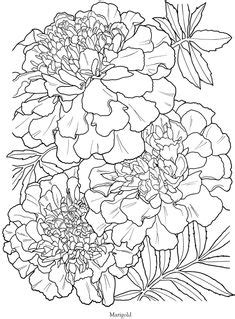 The Language of Flowers Coloring Book | Dover Coloring