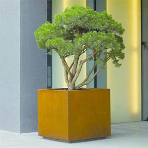 Pot Pour Arbre : bacs pour arbres bacs d 39 orangerie atech ~ Dallasstarsshop.com Idées de Décoration