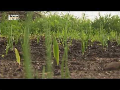 Der Garten Ohne Gärtner by Tv Tipp Garten Ohne G 228 Rtner Newslichter Gute