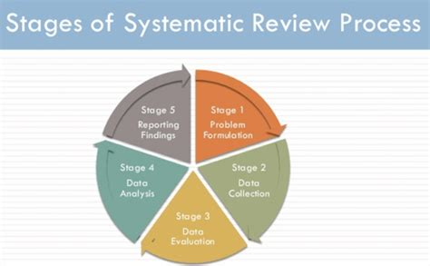 order systematic literature review assignment