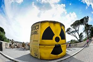 OECD chief says nuclear energy still important