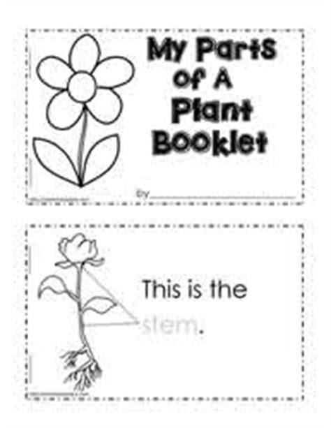 parts   book worksheet  preschool  ideas