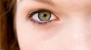 Kontaktlinsen Auf Rechnung Bestellen : sonnenbrillen online bestellen auf rechnung ~ Themetempest.com Abrechnung