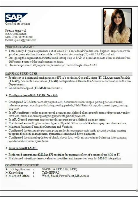 sap hr end user resume cv format sles