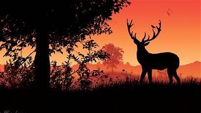 Deer Sunset Silhouette Horns 4k Background Widescreen