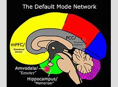 Default Mode Network Centre for Compassion Inspired Health