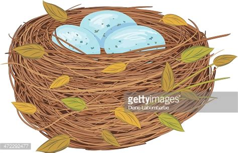 Bird's Nest Stock Illustrations And Cartoons