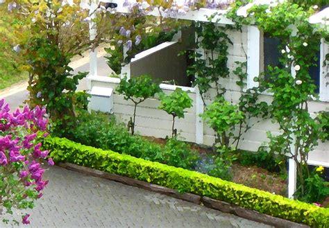 White Cottage In Botanic Gardens Nz Photograph By Gretchen