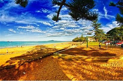 Summer Themes Beach Data