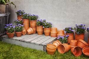 Comment Entretenir Et Raviver Un Pot En Terre Cuite