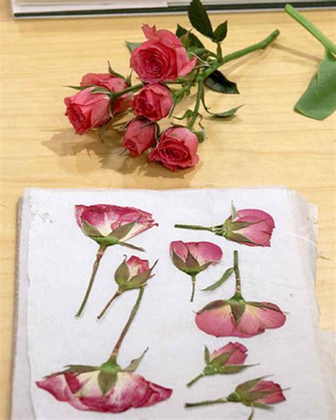 how to press flowers pressing flowers with janie martha stewart