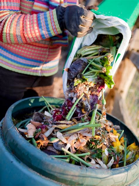 compost cuisine how to compost kitchen waste hgtv