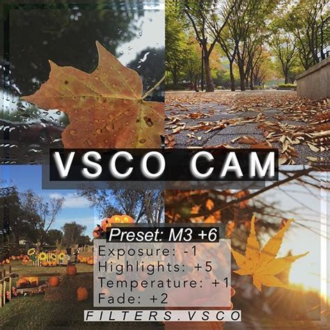 Fall Vsco Backgrounds Quotes by The 25 Best Fall Instagram Captions Ideas On