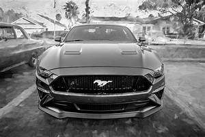 2019 Ford Mustang GT 5.0 X119 Photograph by Rich Franco