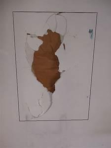 Reboucher Trou Mur Placo : comment r parer un gros trou dans du placo reussir ses ~ Melissatoandfro.com Idées de Décoration