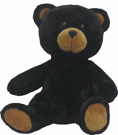 Bear Teddy Stuffable