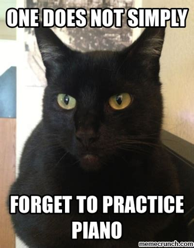Piano Meme - piano practice