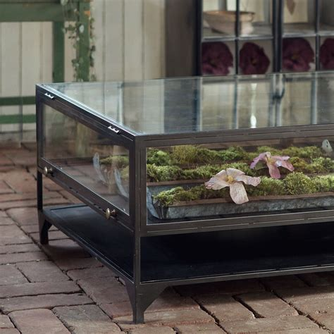 The only problems with glass tanks is that they can be heavy (so once your tank is setup, you probably won't move it) and the glass doesn't hold in. Curio Coffee Table in House+Home HOME DÉCOR Furniture Tables at Terrain   Terrarium table ...