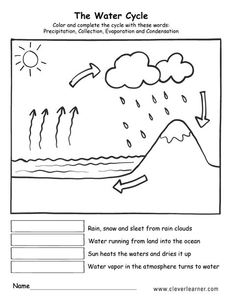 The Watercycle  Actividades Educativas  Water Cycle, Water Cycle For Kids, Types Of Precipitation