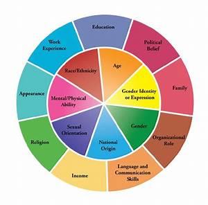 Diversity Wheel As Used At Johns Hopkins University  12